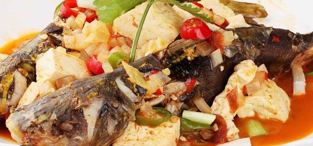 豆腐与鱼,鲜的有余