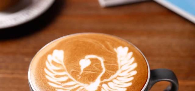 展翅天鹅(拉花咖啡)