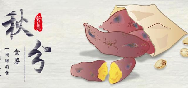 秋分食薯,长寿少疾。